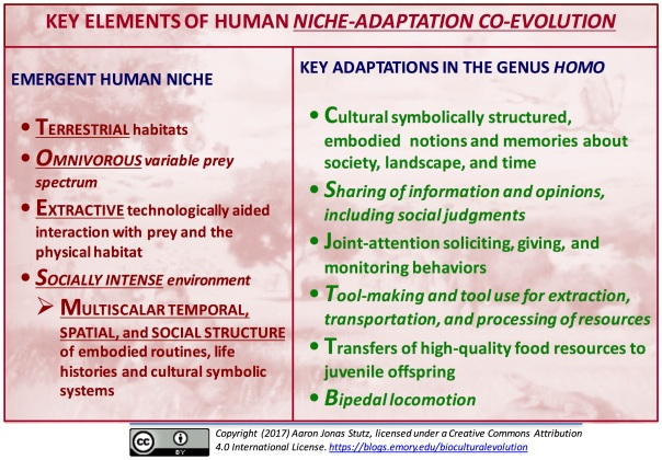 human niche-adaptation coevolution