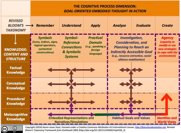 Bloom's revised taxonomy of learning processes and knowledge content and organization. Developed from David R. Krathwohl's (2002)
