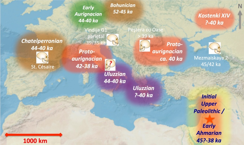 The Protoaurignacian Technological Systems in Broader Early Upper Paleolithic Context